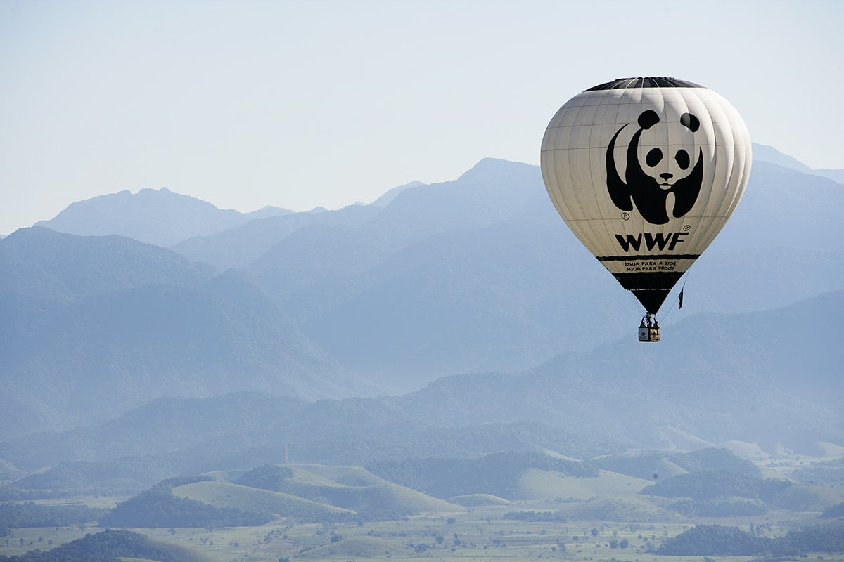 the world wildlife fund logo in use