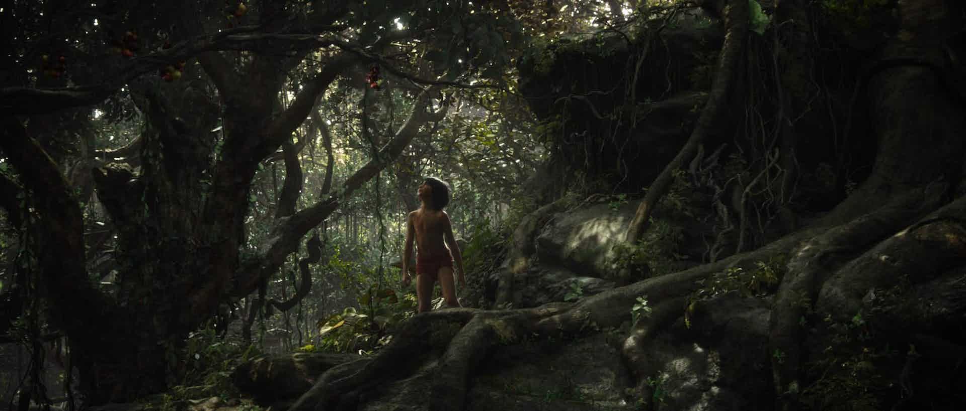 Jungle Book MPC
