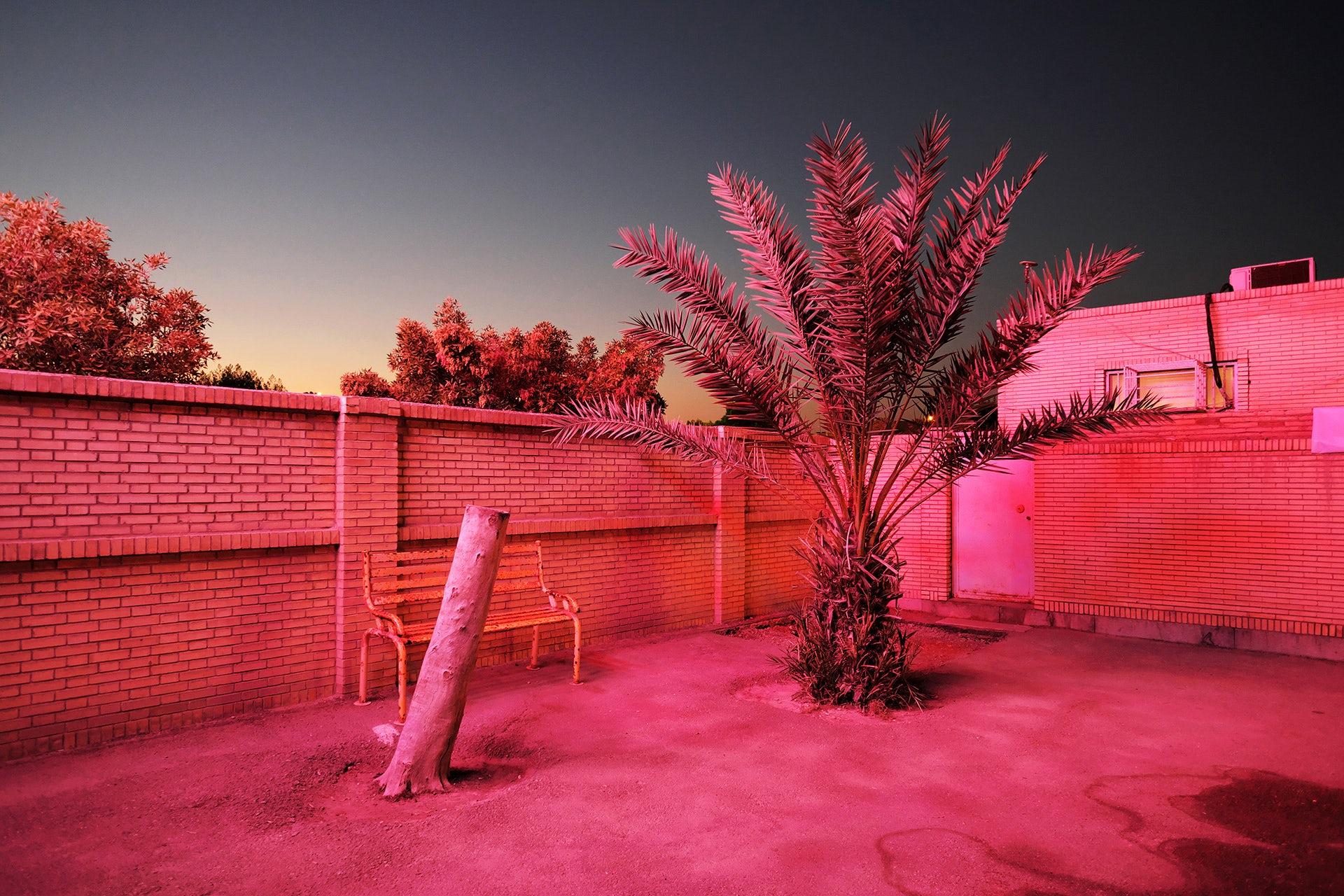 Paradise City by Sébastien Cuvelier